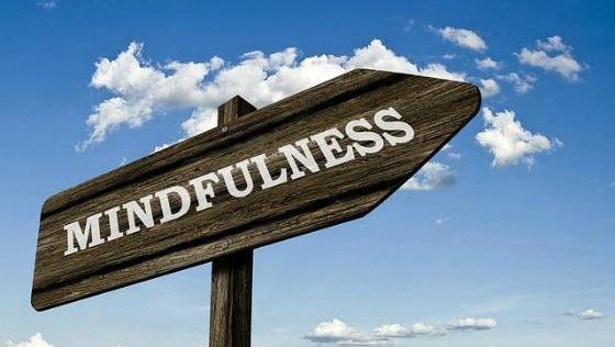 mindfulness-web-41880_560x316